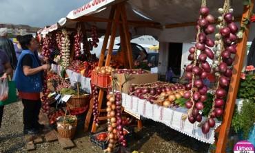 FOTO: Târgul Apulum Agraria. Bogăţiile toamnei pe standurile producătorilor din Alba