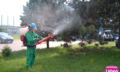 Vineri: Lucrări de deratizare și dezinsecție pe raza Municipiului Sebeș