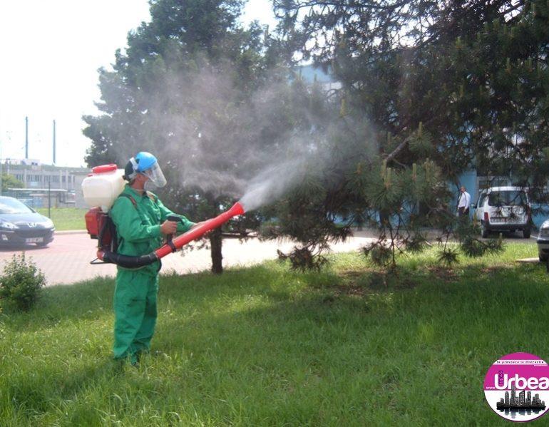 Joi: Lucrări de dezinsecție pe raza domeniului public al Municipiului Sebeș