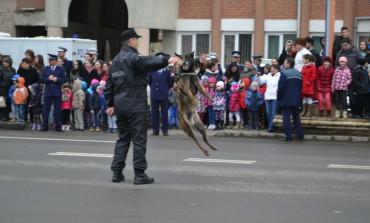 FOTO-VIDEO: Ziua Poliției Române, marcată la Alba Iulia prin porți deschise și exercițiu demonstrativ