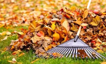 Primăria municipiului Alba Iulia și Polaris M Holding declanșează curățenia de primăvară