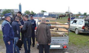 Polițiștii din Alba au continuat controalele în pieţe şi la comercianţi: Amenzi de 300.000 de lei