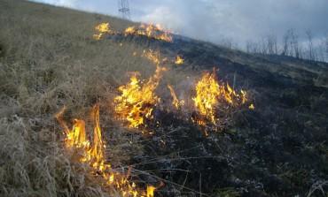 Şapte incendii de vegetaţie uscată în perioada 24-27 martie, la care au fost chemaţi să intervină pompierii din Alba