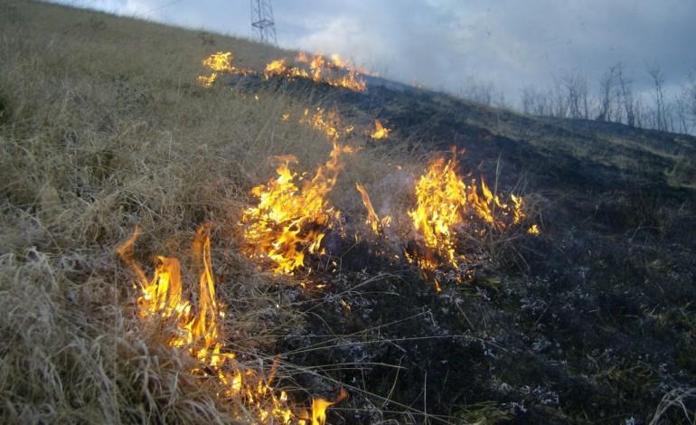 Incendii în Alba: Pompierii au intervenit pentru stingerea flăcărilor de la o gospodărie şi de pe terenuri cu vegetaţie uscată
