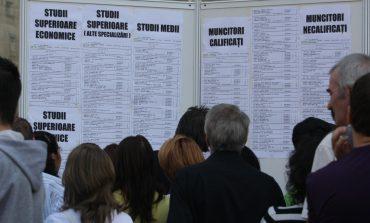 AJOFM Alba: 600 de locuri de muncă disponibile în străinătate. Oferta completă