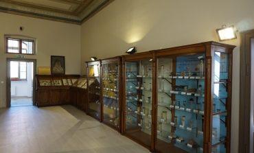 SÂMBĂTĂ: Muzeul de Științele Naturii din Aiud își redeschide porțile