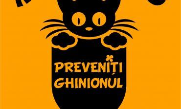 """13 septembrie: """"Ziua informării Preventive"""". Punct de Informare în Piața Cetății din municipiul Alba Iulia"""