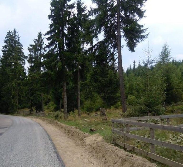 Investiție de peste 44 milioane de euro pentru modernizarea drumului județean care leagă Aiudul de Munții Apuseni