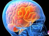 Care este secretul tinereții fără bătrânețe al creierului uman
