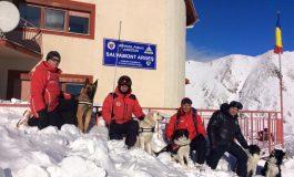FOTO-VIDEO: Tiberiu Krizbai, salvamontistul din Alba Iulia şi căţeluşa Yukan'na Mediguard, printre primii trei admişi în stagiul național de formare a unităților canine de avalanșă