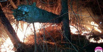 (FOTO) Incendiu de vegetaţie uscată la Poşaga: 9 hectare de teren au fost mistuite de flăcări
