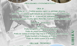 3 IUNIE: Cupa MOL pentru Sănătatea Copiilor, ediţia a II-a, la Leorinţ. Programul evenimentului