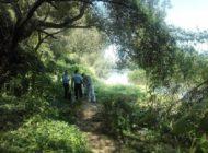 FOTO: Cadavrul unei persoane a fost descoperit, în apele râului Mureş, la Sântimbru. S-a demarat o anchetă pentru stabilirea identităţii
