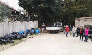 Sâmbătă: Acţiune de ecologizare a pădurii Mamut din Alba Iulia, organizată de cluburile Lions și LEO