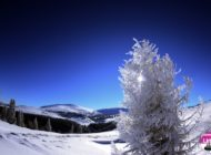Starea pârtiilor în judeţul Alba: Condiţii bune de schi la Arieşeni şi Domeniul Schiabil Şureanu, în perioada 19-25 ianuarie