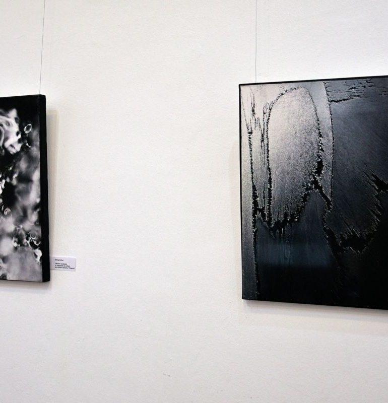 """FOTO: Eveniment Inter Art la Muzeul de Artă Cluj Napoca. Vernisajul expoziției """"Viziuni interioare"""" a artiștilor Balog Ștefan și Balog Zoltán"""