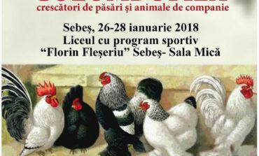 26-28 IANUARIE: Expoziţie columbofilă, la Sebeş. Peste 70 de crescători vor prezenta cele mai frumoase exemplare