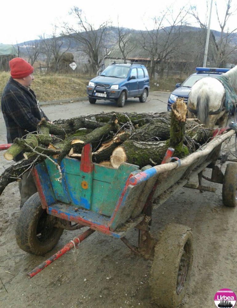 FOTO: Căruţe încărcate cu cu lemn furat, oprite de jandarmii blăjeni