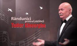 """VINERI: """"Rândunici printre Lozinci"""", o nouă premieră marca Tudor Gheorghe, la Alba Iulia. Un concert ce va readuce în atenţia publicului, poezia şi muzica uşoară a anilor 60-70"""