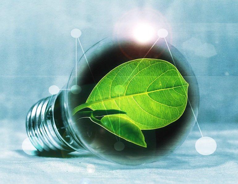 (P) Se poartă ECO! Nu vorbim de alimente, dar cu siguranță casa ta știe despre ce este vorba… ar alege LED!