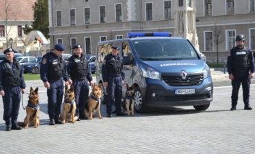 FOTO-VIDEO: Ziua Jandarmeriei Române, marcată la Alba Iulia. Avansări în grad şi exerciţii demonstrative cu câini de serviciu şi tehnică, în Piaţa Cetăţii