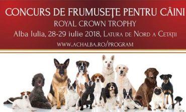 În weekend: Royal Crown Trophy 2018. Peste Peste 1000 de câini, din 16 țări, se întrec la Alba Iulia