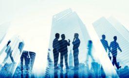 Top 3 oportunităţi de afaceri în judeţul Alba