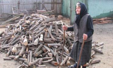 Peste 150 de familii din Meteș, riscă să rămână fără lemn de foc. Vezi declarația primarului.