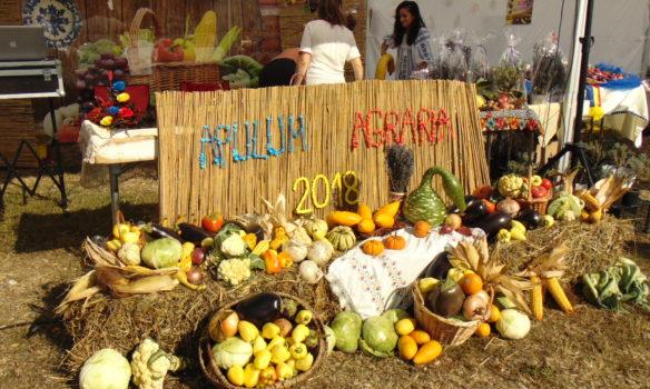 FOTO-VIDEO: Cea de-a XXVII-a ediţie a Târgului Apulum Agraria şi-a deschis porţile. La poveşti cu producătorii locali