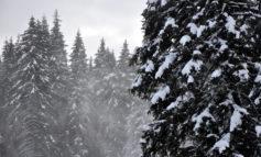 Zăpadă excelentă pe pârtiile de la Domeniul Schiabil Șureanu și Arieșeni, în minivacanța de Anul Nou