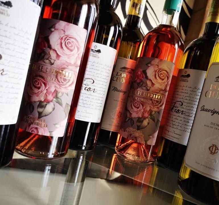 Joi: Degustare de vinuri la GoIn Caffee Restaurant Alba Iulia