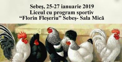 """25-27 ianuarie: Expoziție columbofilă în sala mică a Liceului cu Program Sportiv """"Florin Fleșeriu"""" Sebeș"""