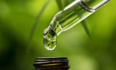 Un nou studiu relevă efectele benefice pe care uleiul CBD le-ar avea în combaterea autismului
