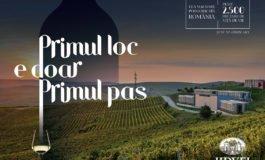 """Jidvei celebrează 20 de ani de pasiune și respect pentru arta vinului și anunță lansarea campaniei """"Primul loc e doar primul pas"""""""
