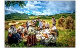 FOTO: CUNUNA GRÂULUI - obiceiul secerișului la Izvoarele, comuna Livezile