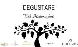 11 iulie- Degustare Viile Metamorfosis la SOMM Tapas & Winebar