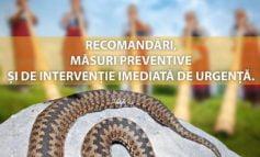 Măsuri de evitare a mușcăturii accidentale de viperă și intervenția imediată de urgență