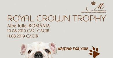 10-11 august: Expoziția chinologică internațională Royal Crown Trophy