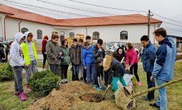 """""""Părculețul cu gânduri bune"""" – copiii din Ciugud au plantat un nou părculeț în comună dorind tragă un semnal de alarmă privind încălzirea globală"""