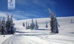 Starea pârtiilor este perfectă pentru sporturile de iarnă la Domeniul Schiabil Șureanu