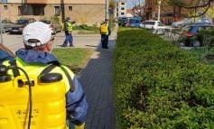 De luni, Primăria Municipiului Sebeș va efectua servicii de dezinfecție în scările tuturor blocurilor