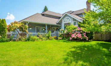 4 modalități de a suporta zilele călduroase de vară, chiar în grădina ta!