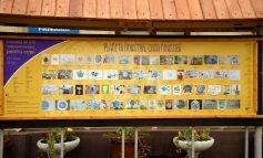 """Expoziţia de artă intercontinentală pentru copii """"planeta noastră, casa noastră"""", la Aiud"""