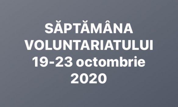 """A debutat """"Săptămâna voluntariatului"""", manifestare organizată de Casa de Cultură a Studenților Alba Iulia"""