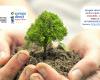 Ești gata să faci mai mult pentru a ajuta planeta? Vino cu noi și plantează un copac