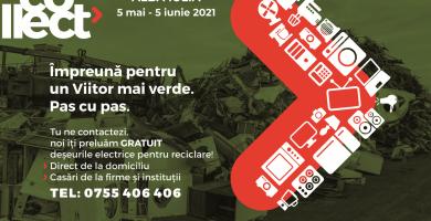 Sărbătorim Ziua Mediului în comunități eco-responsabile